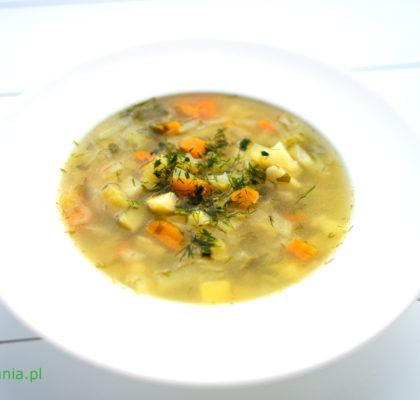 kapusniak z mlodej kapusty i warzyw